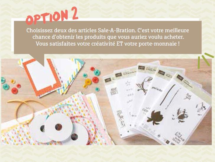 Option 2 FR